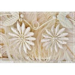 Ohrringe CHLOY Brautschmuck Ivory Weiß Ohrschmuck Perlen
