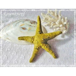 SEESTERN  Moosgrün Stoffstern Textil Pailletten Perlen